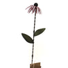 Home & Garden Tin Cornflower Small Purple Plant Sticks