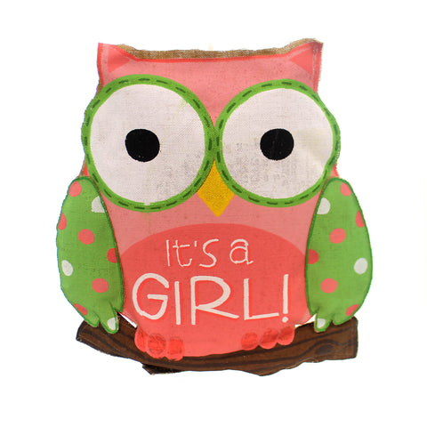 Home & Garden Whooo's Cutest It's A Girl Door Decor 27411
