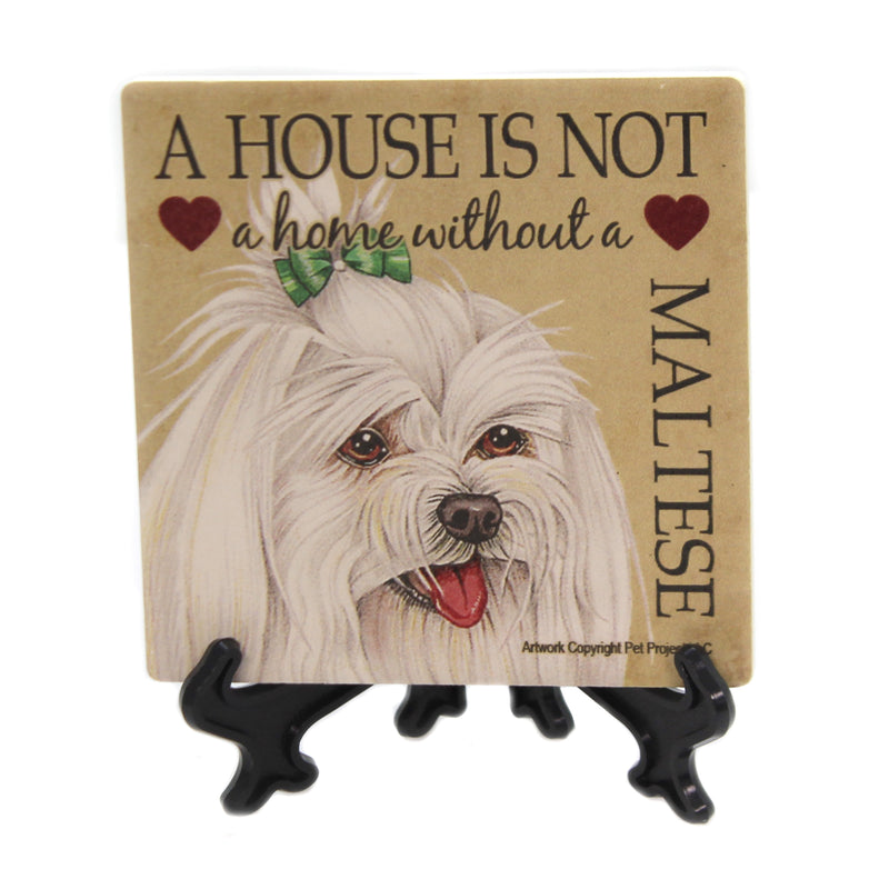 Animal MALTESE - HOUSE Stone Stone Coaster Easel 24646