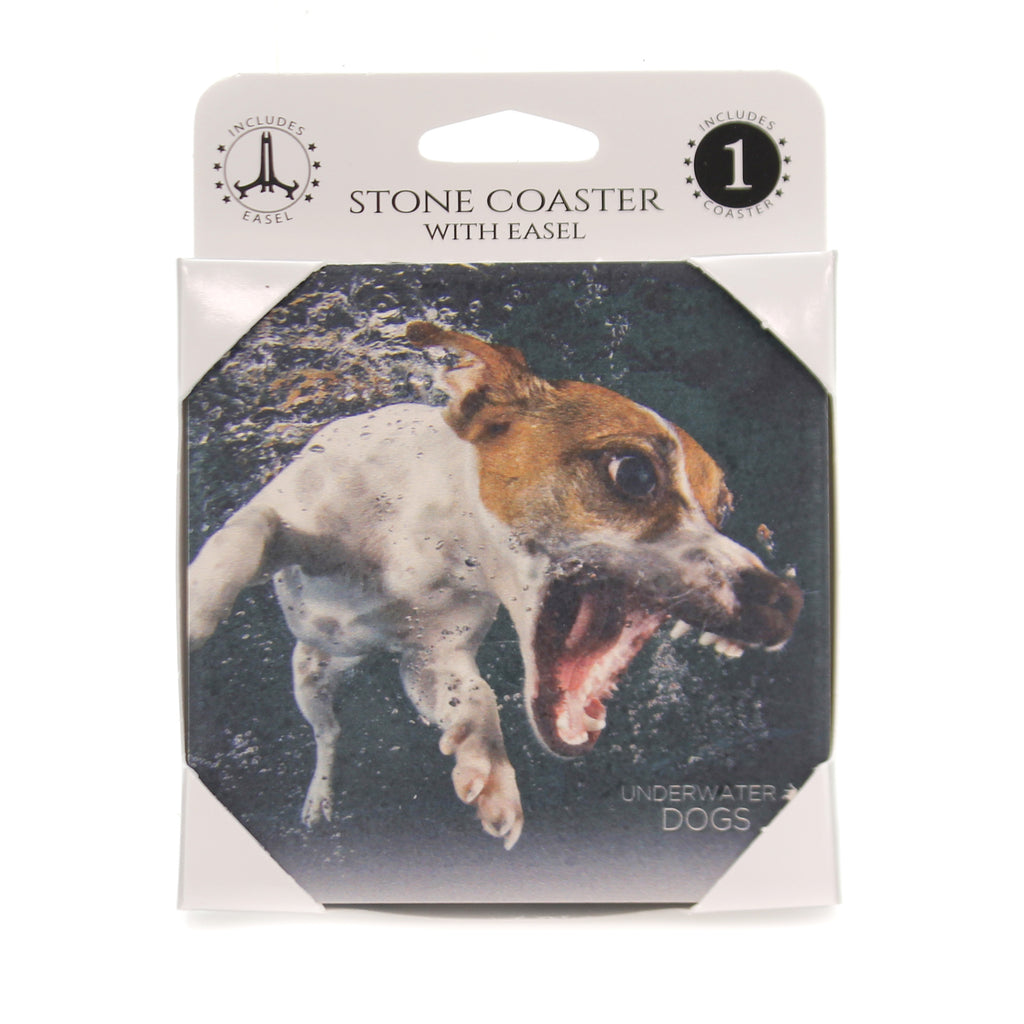 Animal JACK RUSSELL TERRIER UNDEWATER Stone Stone Coaster Easel 58616