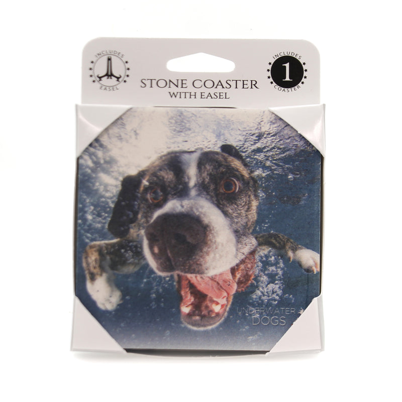 Animal BOXER MIX UNDERWATER Stone Stone Coaster Easel 58615