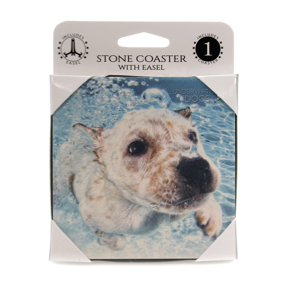 Animal CATTLE DOG MIX UNDERWATER Stone Stone Coaster Easel 58611