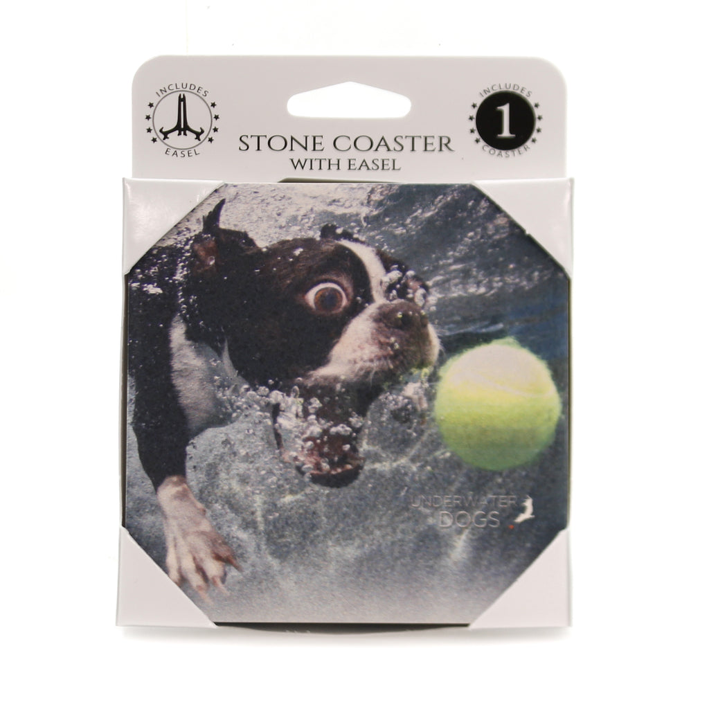 Animal BOSTON TERRIER UNDERWATER Stone Cork Back Coaster 58601