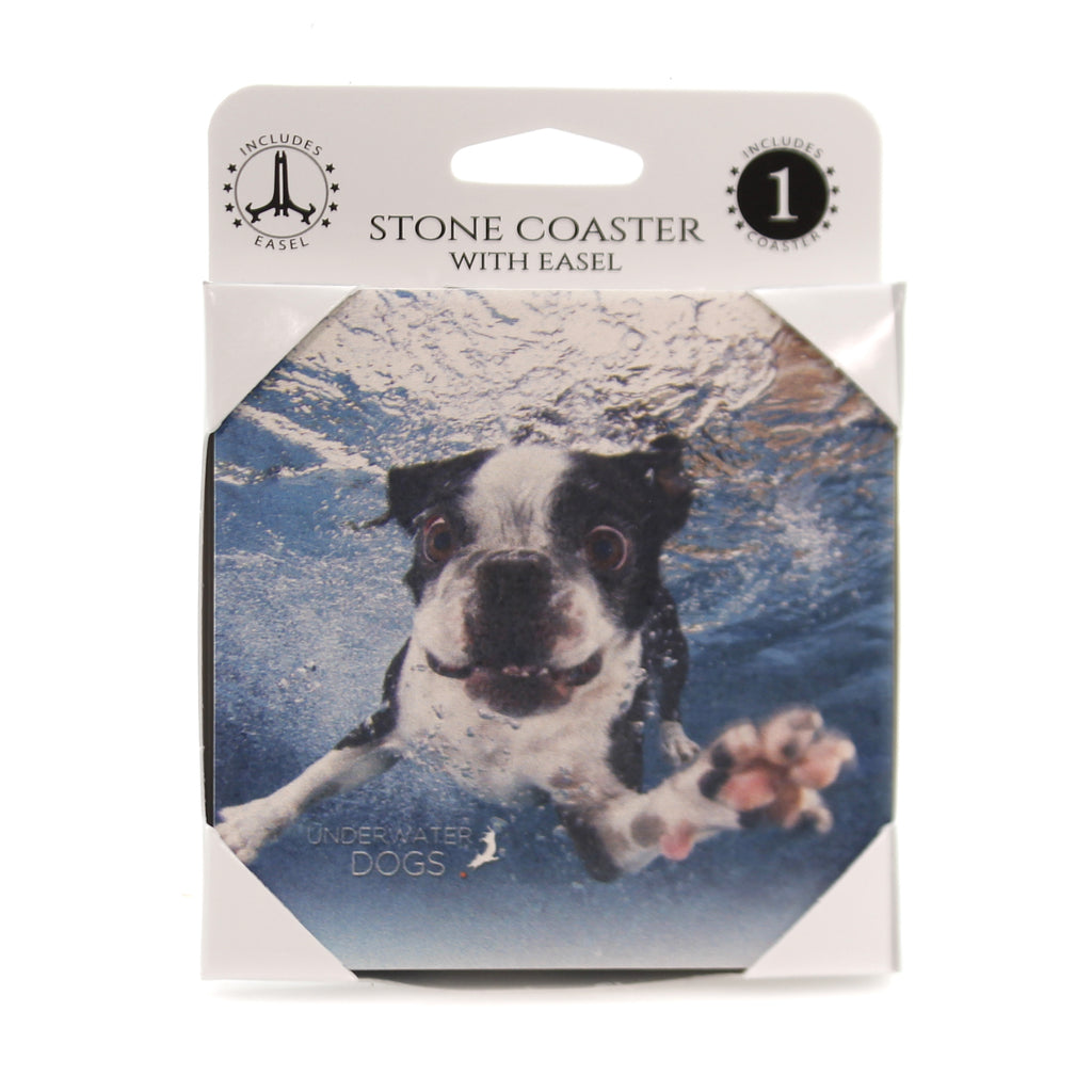 Animal BOSTON TERRIER UNDERWATER. Stone Stone Coaster Easel 58602