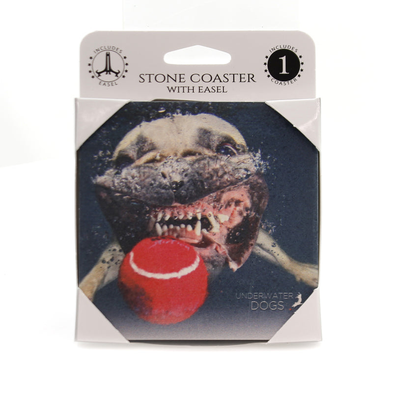 Animal FRENCH BULLDOG Stone Cork Back Coaster Easel 58617