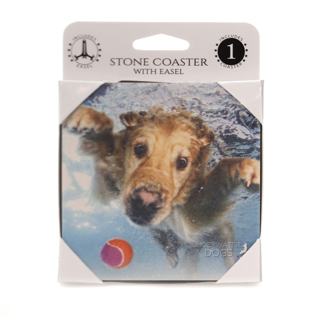 Animal GOLDEN RETRIEVER UNDERWATER Stone Stone Coaster Easel 58613