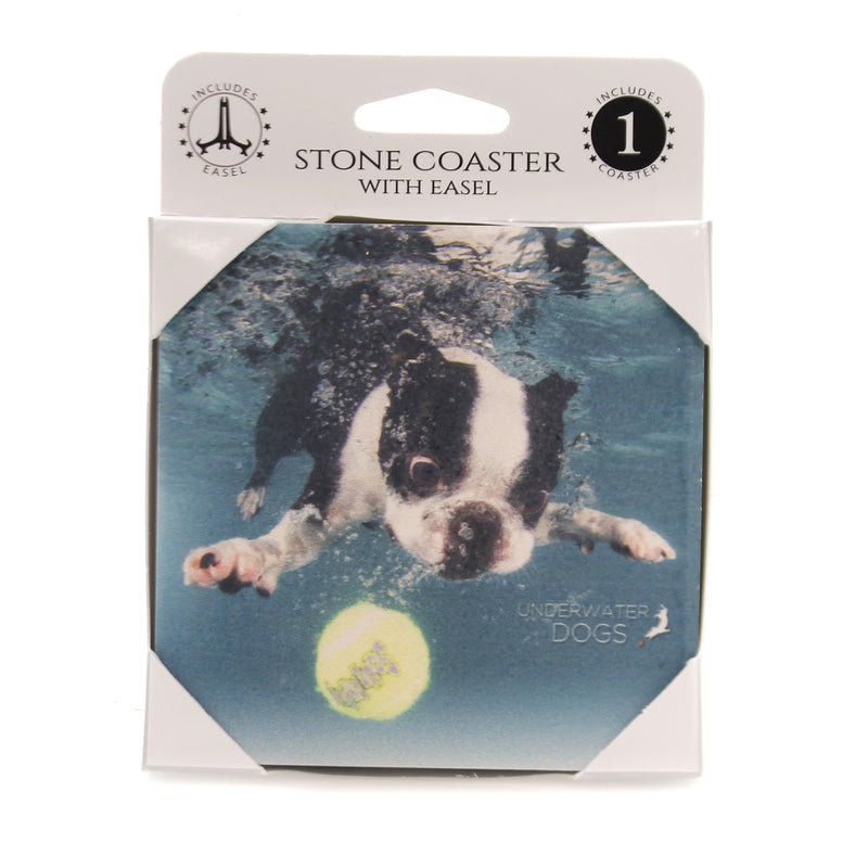 Animal BOSTON TERRIER UNDERWATER.. Stome Stone Coaster Easel 58607