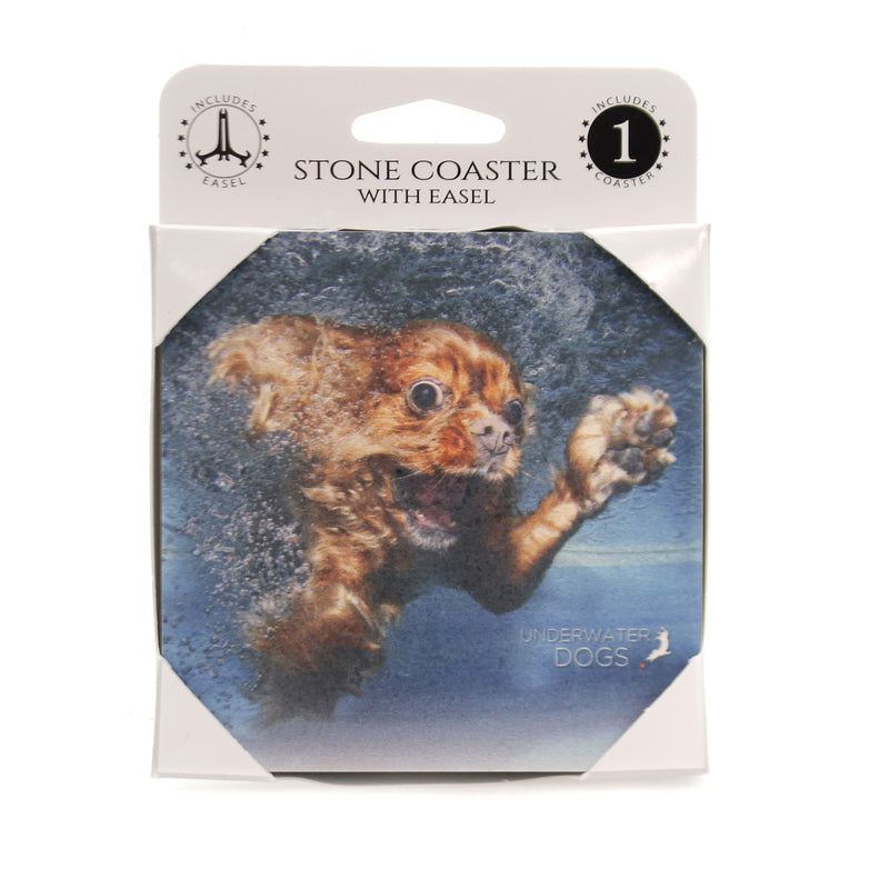 Animal CAVALIER KING CHARLES Stone Cork Back Coaster Easel 58608