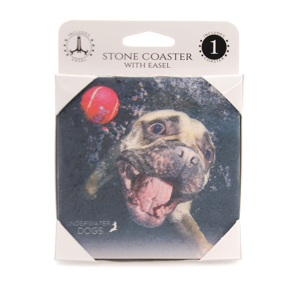Animal FRENCH BULLDOG UNDERWATER Stone Stone Coaster Easel 58618