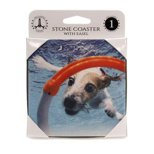 Animal JACK RUSSELL TERRIER Stone Cork Back Coaster Easel 58624