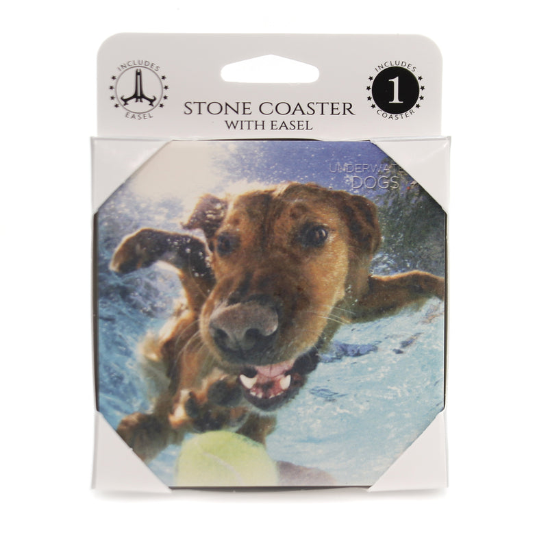 Animal GOLDEN RETRIEVER UNDERWATER. Stone Stone Coaster Easel 58621