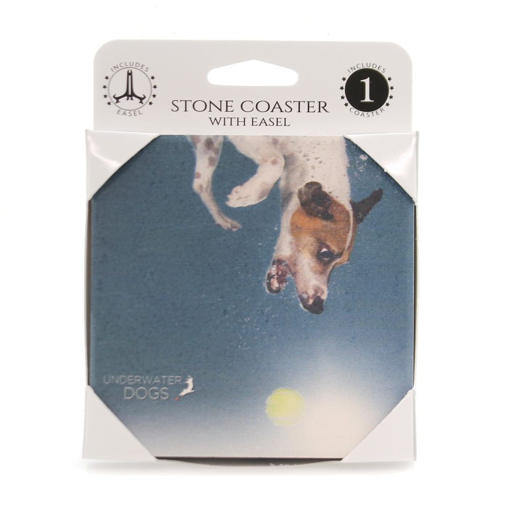 Animal JACK RUSSELL UNDERWATER Stone Stonecoaster Easel 58619