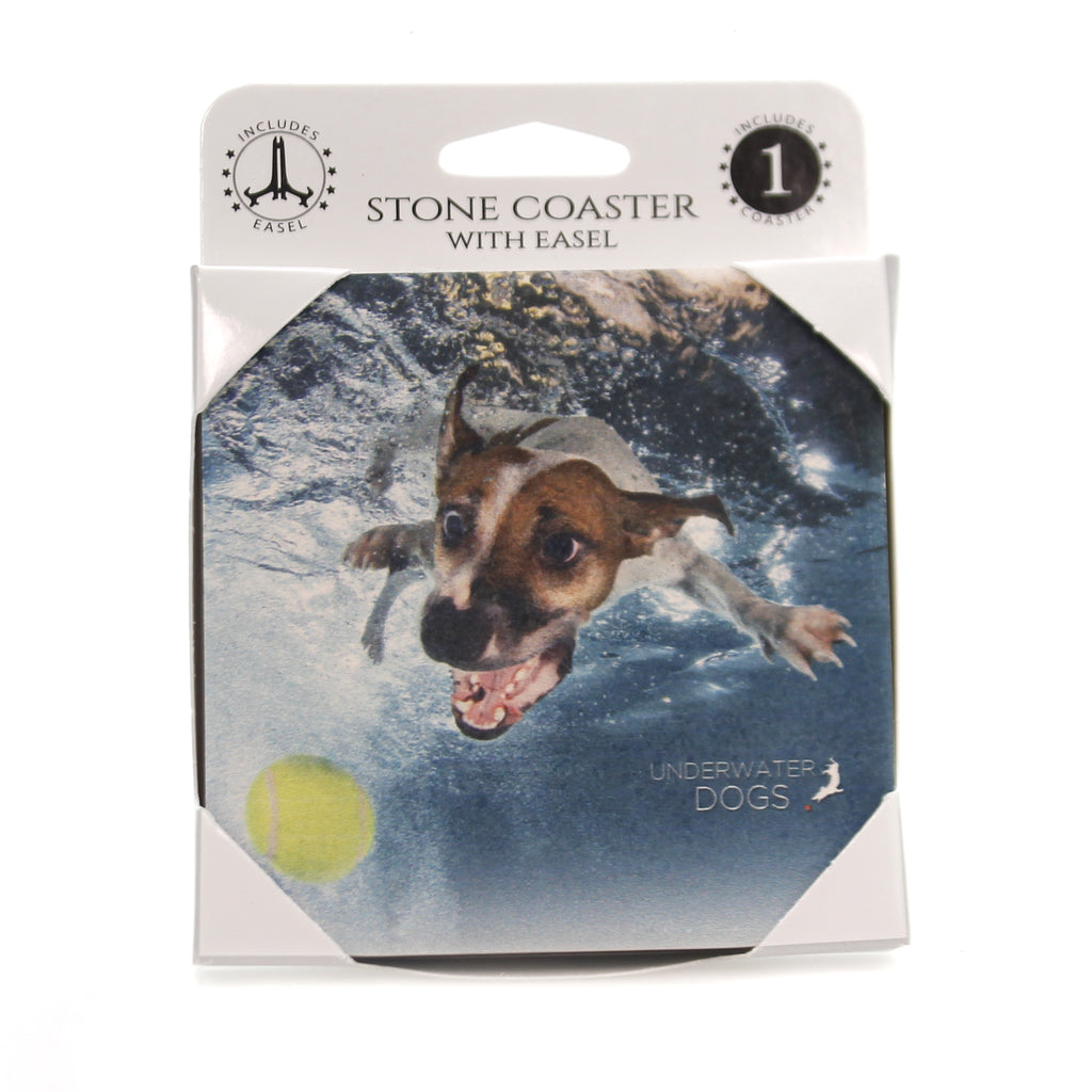 Animal JACK RUSSELL TERRIER UNDERWATER Stone Stone Coaster Easel 58620
