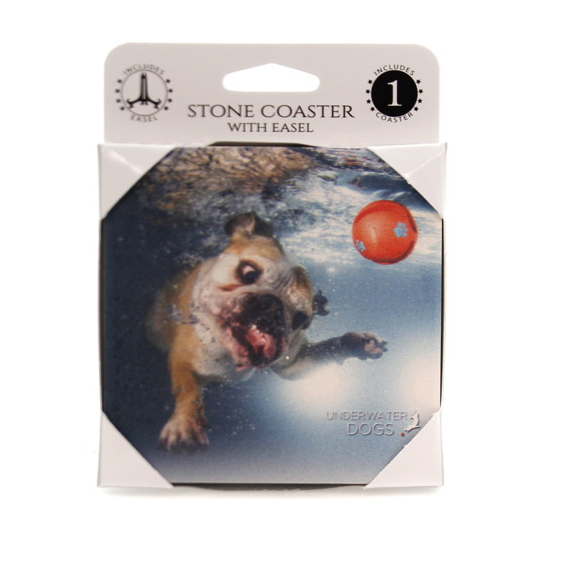 Animal ENGLISH BULLDOG UNDERWATER Stone Stone Coaster Easel 58623