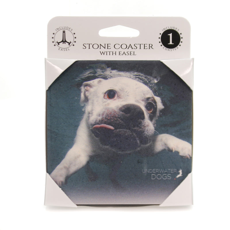 Animal ENGLISH BULLDOG UNDERWATER. Stone Stone Coaster Easel 58622