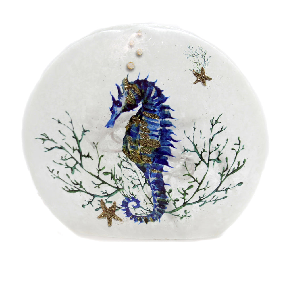 Stony Creek SEAHORSE SMALL ROUND ORB Glass Starfish Ocean Sea Seh9261
