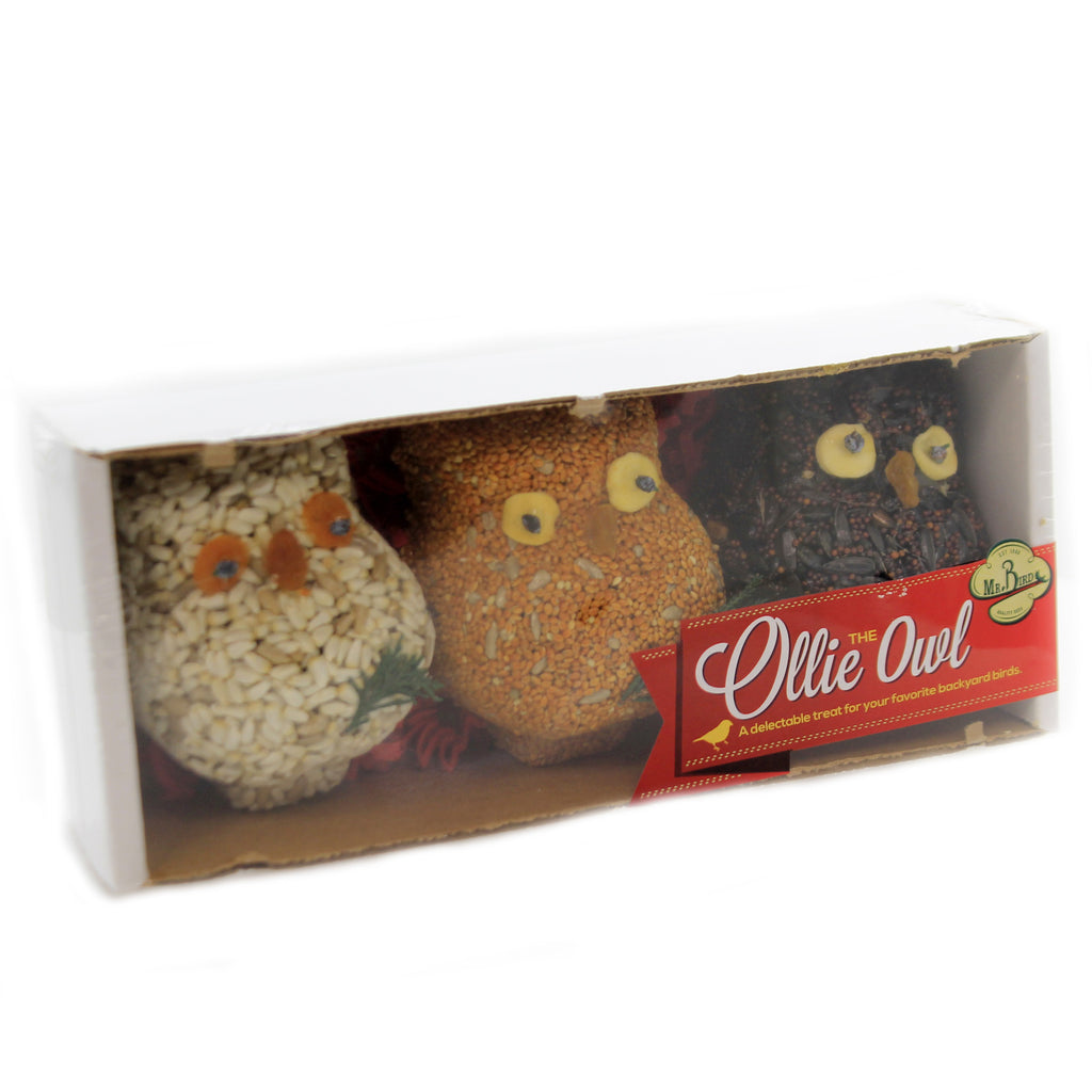 Ollie Owl Set / 3 732 Home & Garden Bird Supplies - SBKGIFTS.COM - SBK Gifts Christmas Shop Cincinnati - Story Book Kids