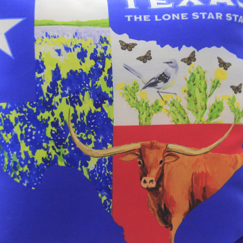 Texas Collage Climaweave Pillow Sltcmc Home Decor Decorative Pillows - SBKGIFTS.COM - SBK Gifts Christmas Shop Cincinnati - Story Book Kids