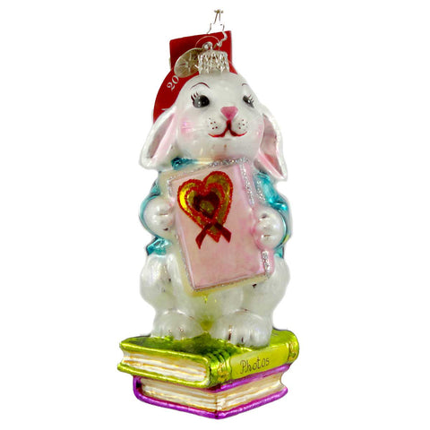 Christopher Radko A Shy Rabbits Heart Glass Ornament 998