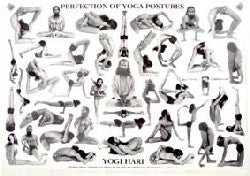 Chart Perfection of Yoga Postures