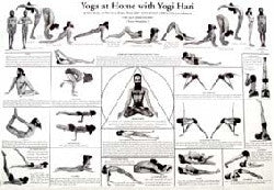 Chart Yoga at home with Yogi Hari