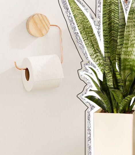 Harlow Toilet Paper Holder from UO & Snake Plant from The Sill | ALIGN : LEFT