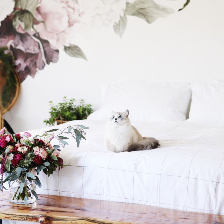 A cat sitting on a bed with white sheets