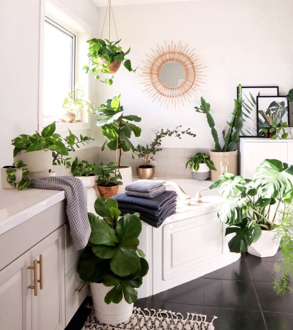 White bathroom with LOTS of plants