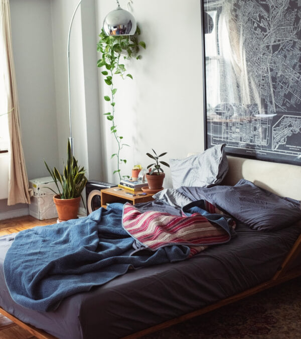 Unmade bed with graphite sheets on it.  Lots of plants in the bedroom