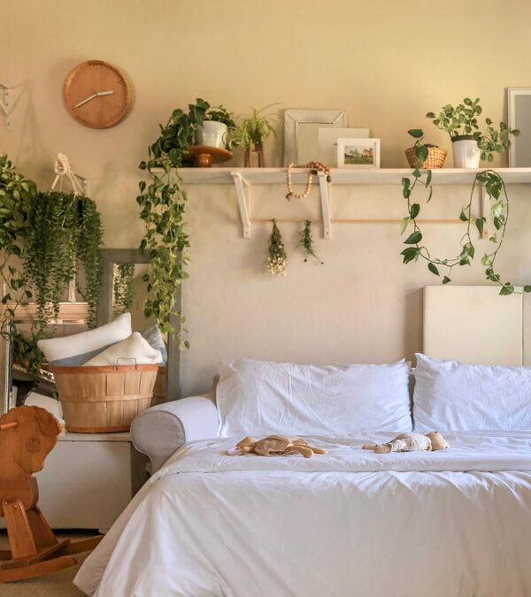 Sleeper sofa, made up in white sheets and lots of plants in the room