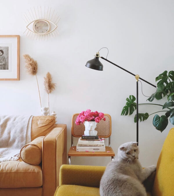Living room with a cognac leather sofa, a grey wool throw blanket, a big palm plant, and a cat.
