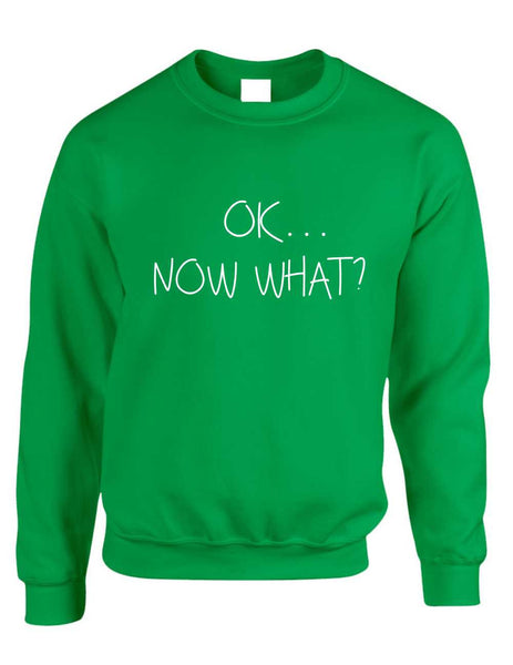 Adult Crewneck OK Now What? Funny Cool Stuff Humor Top - ALLNTRENDSHOP - 2