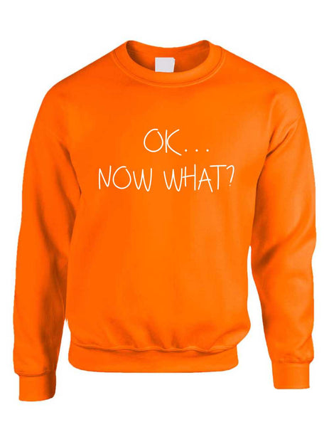 Adult Crewneck OK Now What? Funny Cool Stuff Humor Top - ALLNTRENDSHOP - 4