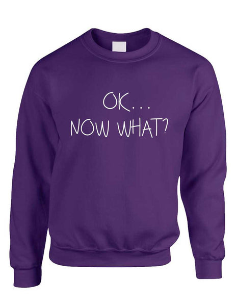 Adult Crewneck OK Now What? Funny Cool Stuff Humor Top - ALLNTRENDSHOP - 5