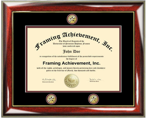 University diploma frames college degree triple medallion seal logo graduation plaque certificate framing plaque