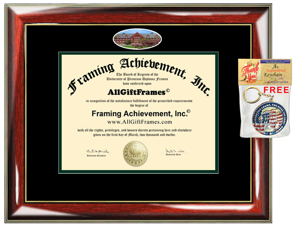 University of Vermont diploma frame campus photo certificate framing d