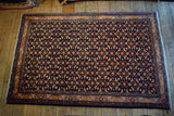 Sarouk Rug 155x107 Z2043 - Persian Tribal Rugs