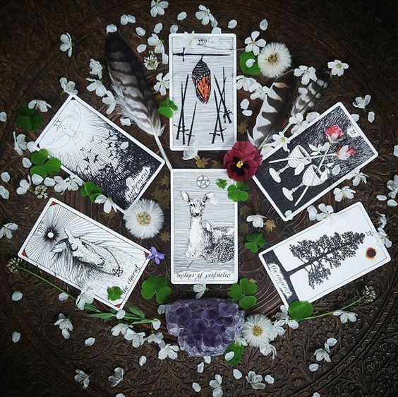 MONTHLY RENEWAL TAROT CARD READING