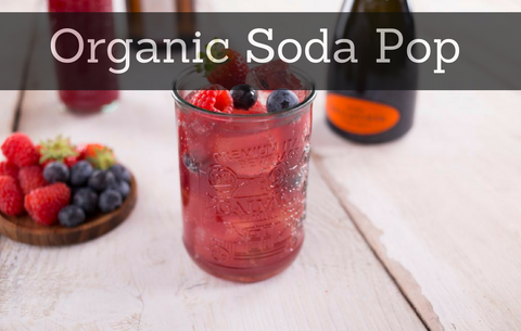 Is Organic Soda becoming the Goliath of the soda pop industry?