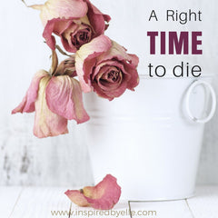 Contmeporary Poem about Timing of Death A Right Time To Die By Elle Smith London Poet