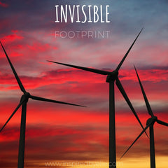 Invisible Footprint Original Poetry by Elle Smith Conservation Ecosystem Pollution Endangered Animal Species