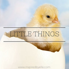 Original Poem Little Things by Elle Smith Inspired By Elle Contemporary Love Poetry
