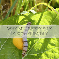 Article - Why Mulberry Silk is Eco-Friendly by Elle Smith of Inspired By Elle