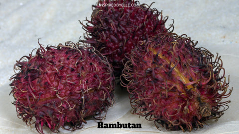 Rambutan  10 of the Most Exotic Fruits on the Planet by Elle Smith