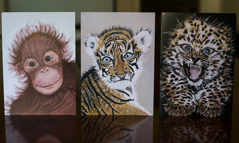 Set of Luxury Animal Art Greeting Cards Sumatran Orangutan Sumatran Tiger Amur Leopard Endangered Animal Art cards Elle Smith Inspired By Elle