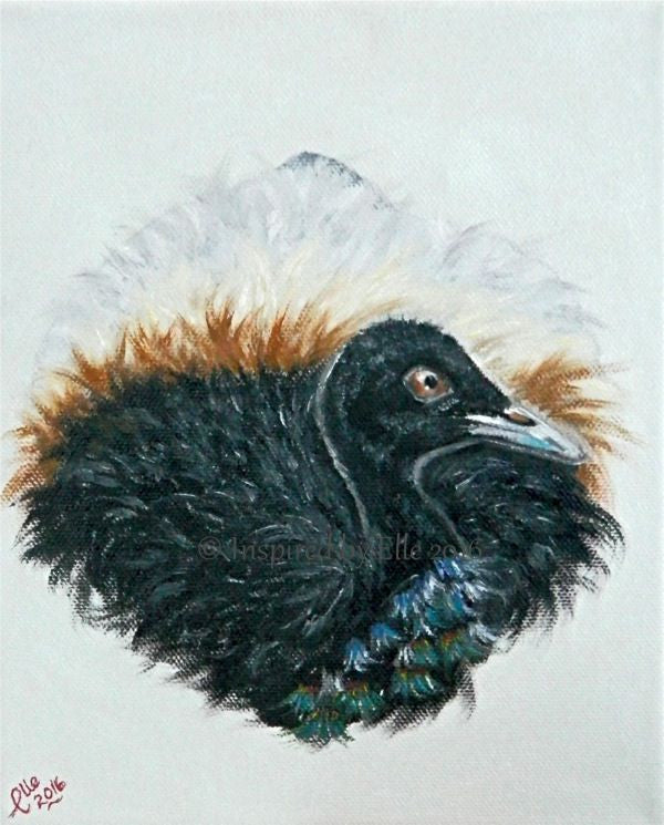 Animal Art Painting Grey-Winged Trumpeter by Elle Smith Inspired By Elle endangered species