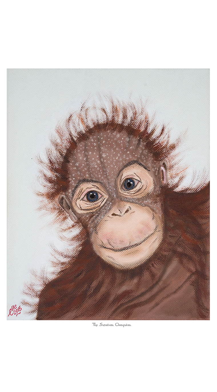 Limited Edition Giclee Print Sumatran Orangutan endangered animal art print Elle Smith Inspired By Elle