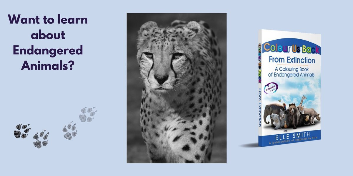 Colour Us Back From Extinction Endangered Animal Colouring Book by Elle Smith