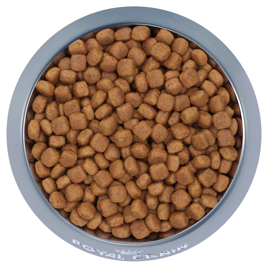 Royal Canin Giant Puppy - Dry 15kg