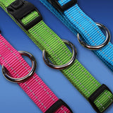 Rogz Side Release Dog Collar - Utility with Reflective Stitching - Blue - Various Sizes